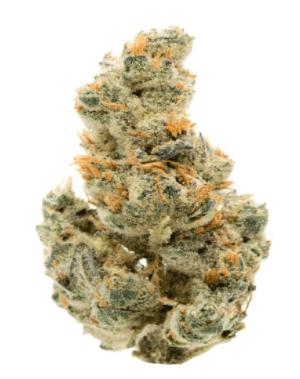 GMO - Cannabis Strain