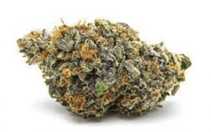 Mimosa Cannabis Strain