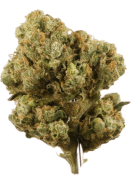 Sour Diesel Cannabis Strain